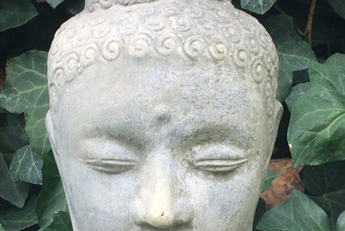 meditazione, trascendenza